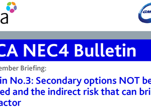 CECA/GMH Bulletin 3 – ECC Secondary Options